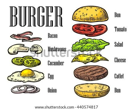 burger ingredients on white