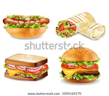 Burger, sandwich, hot dog and wrap Vector. Realistic set collections