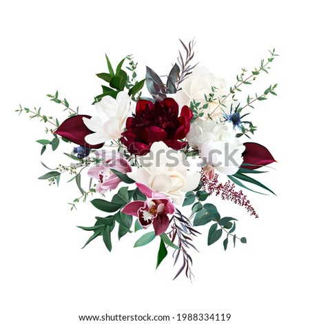 burgundy red peony and