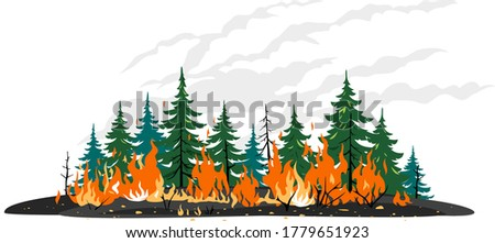 Burning forest spruces in fire flames clip art template, nature disaster concept isolated illustration, poster danger, careful with fires in the woods