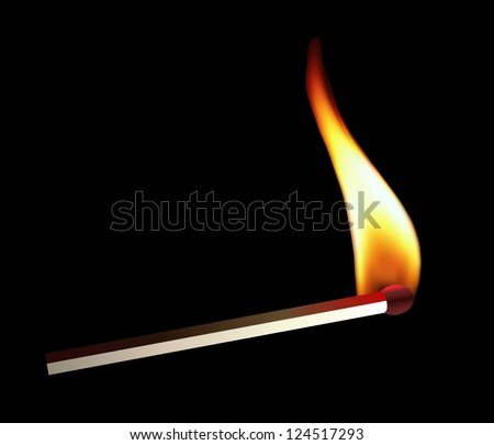 Burning Matchstick with Flame