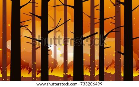 burning  wildfire in california