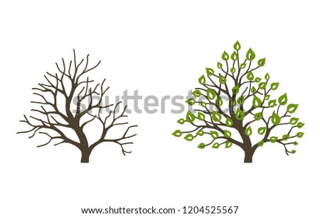 bush with leaves and without on