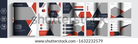 Business company Brochure and company profile