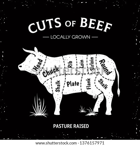 Butcher cow poster. White beef diagram, cow silhouette vintage logo, restaurant menu beef cut template. Vector butcher beef illustration guide diagram
