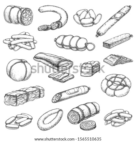 Butcher shop meat, vector hand drawn sketch icons. Butchery delicatessen and gourmet sausages, pork ham, beef steak and chops, mutton ribs, salami, barbecue brisket and jamon