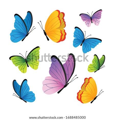 butterflies cute butterflies