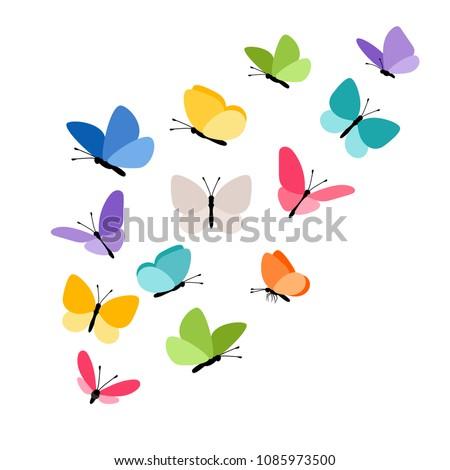 butterflies in flight colorful
