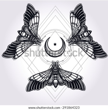 butterflies moth with moons