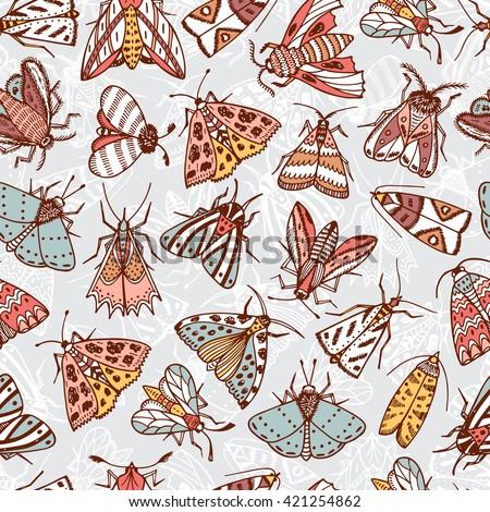 butterflies moths hand drawn