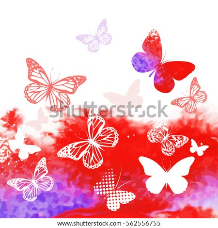 butterflies on a colorful