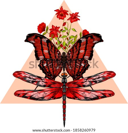 butterfly and dragonfly black