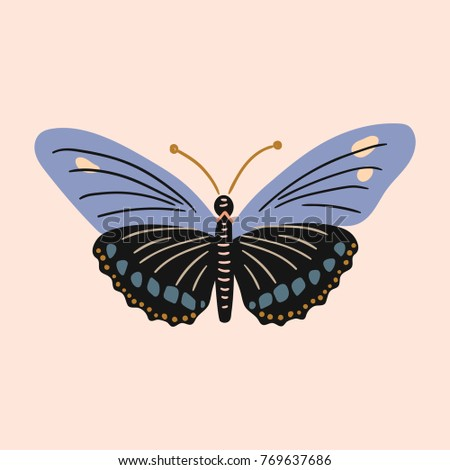 Butterfly clip art design vector vintage illustration