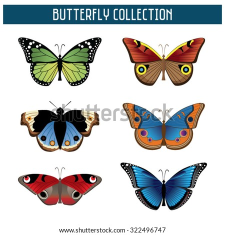 butterfly collection  set of 6