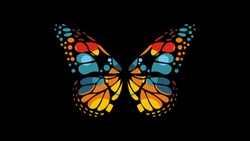 butterfly color style