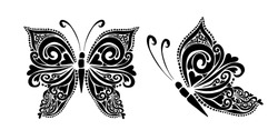 Butterfly decorative tattoo. Black Butterfly from patterns. Vector illustration