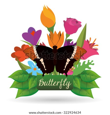Butterfly insect and natural icons design, vector illustration 10 eps graphic.