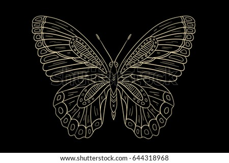 Line Drawing Vector Graphics : Butterfly line drawing download free vector art stock graphics