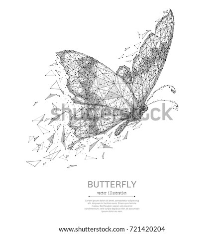 butterfly low poly wireframe