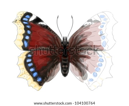 Butterfly Numphalis Antiopa. Unfinished Watercolor drawing imitation. Vector illustration.