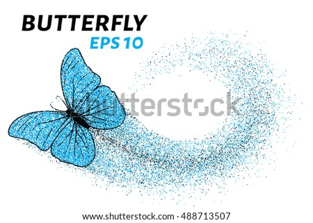 butterfly of the particles of