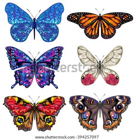butterfly set of vector
