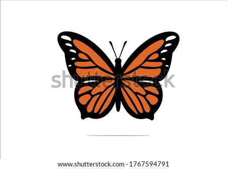 butterfly vector design hand drawn daisy flower design hand drawn daisies positive quote flower design margarita  mariposa stationery,mug,t shirt,phone case fashion style spring summer Stock photo ©