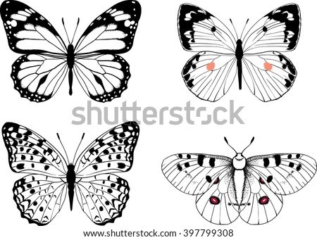 butterfly vector set of 4 hand