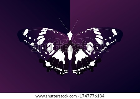 butterfly with open wings top