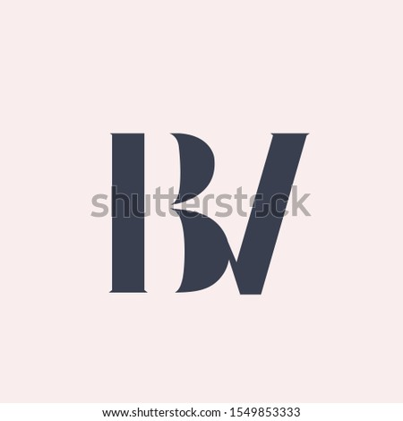 BV monogram logo.Typographic icon with letter b and letter v overlapped.Uppercase lettering sign.Alphabet initials isolated on light pink background.Luxury,beauty,boutique,modern style signature.