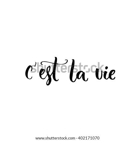 c'est la vie french phrase