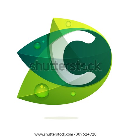 c letter with green leaves and