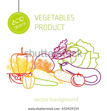 Cabbage, carrot, pepper, cucumber, eggplant, beet, tomato, vegetable set, vector background, fresh vegetables, healthy diet, greeting card  #650429314