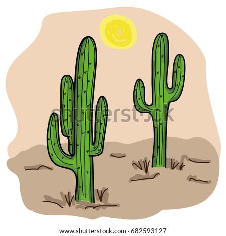 cacti cactus illustration vector