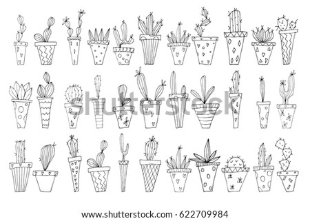 house plants drawing. a set of handdrawn succulents collection house plants drawing