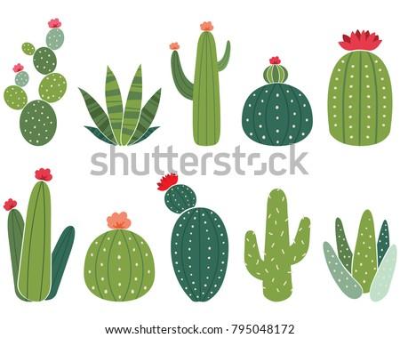 Cactus Collections Set Сток-фото ©
