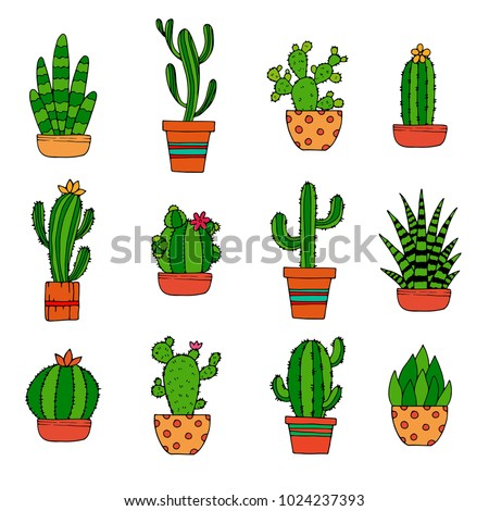 Cactus decorative home plant in pots flat vector icons. Cactus flora flower, flowerpot green and houseplant illustration on white, bright background.