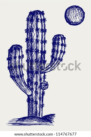Cactus in desert. Doodle style