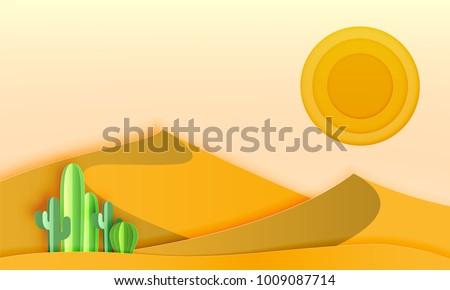 cactus in the desert landscape