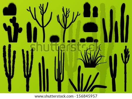 cactus plants detailed