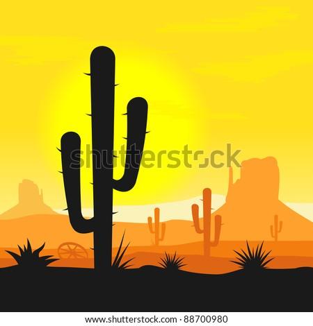 cactus plants in desert