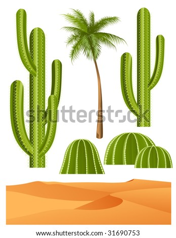 cactus set  vector illustration