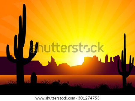 cactus   sunset valley