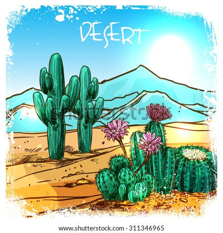 cactuses in mexico desert with