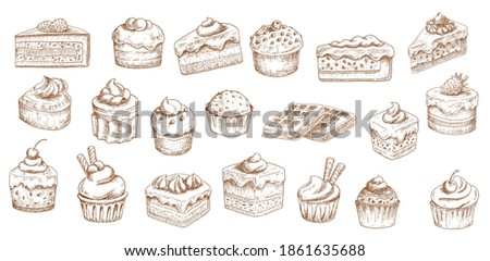 Cakes sketch icons, pastry desserts, bakery sweets, vector hand drawn. Bakery and pastry shop sweet chocolate cakes, patisserie sweet dessert cheesecakes, tiramisu, brownie cupcake and waffles