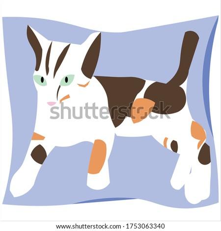 calico cat is a female cat