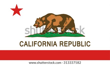 california state national flag