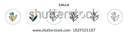 calla icon in filled  thin line