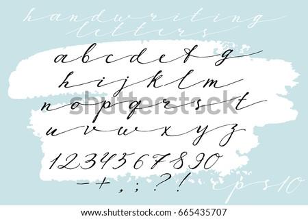 Calligraphic hand drawn font. Handwritten alphabet in elegant brush style. Modern script in vector. Handmade thin artistic letters.