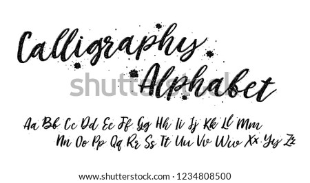 Calligraphy Alphabet. Lettering font isolated on white background. Texture typography. Vector logo letters.